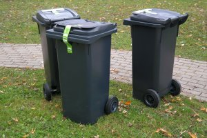 Waste bins ready for collection